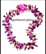 Orchid-hawaiian-purple-lei
